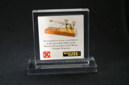 "Lucite Tombstone Embedment 4"" x 4"" x 7/8"""