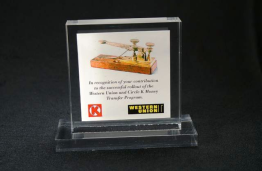 "Lucite Square Embedment 4 "" x 4 "" x 7/8 """