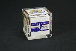 """Acrylic Cube Embedment  4"""" x 4 """" x 4 """""""