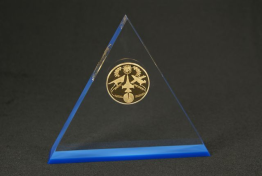 "Clear Lucite Triangle Embedment 6 "" x 5 1/2 "" x 1 """
