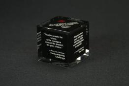 """Acrylic Cube Embedment  3 """" x 3 """" x 3 """""""